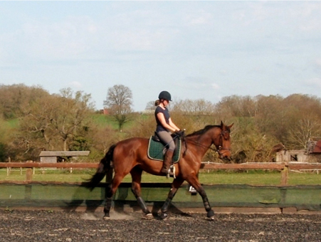 Dale Lassetter Dressage Georgina with Flint