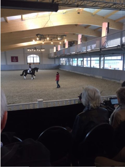 Global Dressage Forum - Dale Lassetter